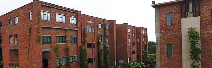 IILM University